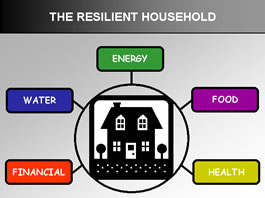 graphic representation of The Resilient Household concept - the five supporting areas are Food, Water, Energy, Financial, and Health