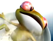 environmental animated shorts link; thumb of frog in cup of warm water