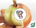 thumb of onion; click to go to audio page at external site; opens in new window